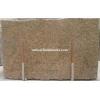 Buy cheap Granite Slab Giallo Fiorito Granite Slab & Tile from wholesalers