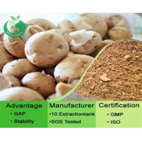 Buy cheap Agaricus Blazei Murill Extract / Agaricus Mushroom from wholesalers