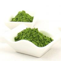 Buy cheap Herbal Extract Wheatgrass Juice from wholesalers