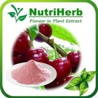 Buy cheap Natural Acerola Cherry Extract,Acerola Cherry Powder,Cherry Fruit Extract from wholesalers