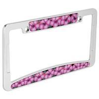 Buy cheap Sale Pink Hibiscus and Chrome License Plate Frame from wholesalers