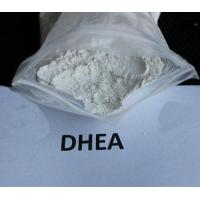 Buy cheap 566-19-8 DHEA (7-Keto-Dehydroepiandrosterone) from wholesalers
