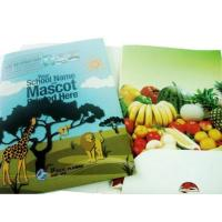 Buy cheap Cheap Paper File Folder Printing from wholesalers
