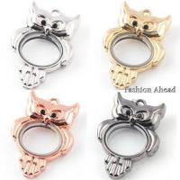 Buy cheap LPA-016Unique Shape Memory Glass Lockets from wholesalers