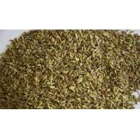 Buy cheap Fennel Seeds product