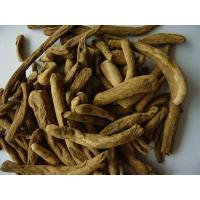 Buy cheap Rhubarb Root Shuiken Peeled from wholesalers