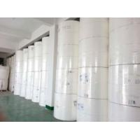 weyerhaeuser paper Cellulose fibers international paper's global cellulose fibers business sells a full line of absorbent fluff and specialty pulp, as well as paper and tissue pulp,.