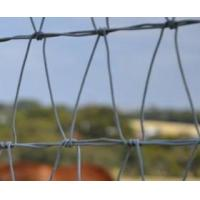 Buy cheap The right Field Fence you need for horse, deer and sheep from wholesalers