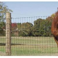 Buy cheap High tensile field fence, stronger and installs faster field fencing from wholesalers