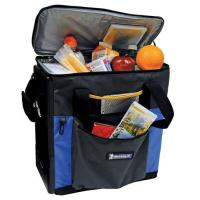 Buy cheap Michelin 12-Volt Hybrid Cooler from wholesalers