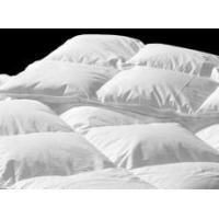 Buy cheap Hotel Duvets/Doonas 'Presidential Suite Indulgence' King Bed Winter Package! from wholesalers