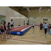 Buy cheap IS-103 INFLATABLE TUMBLE TRACK from wholesalers