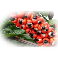 Buy cheap Guarana Extract product