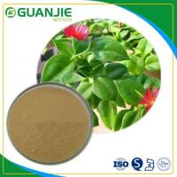 Buy cheap Andrographis Paniculata Extract / Natural Andrographolide Powder Natural Antibiotics High Quality product
