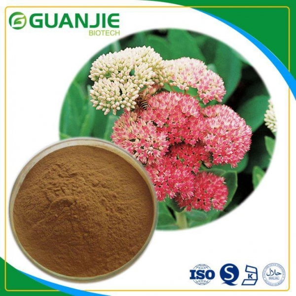 Quality Rhodiola Rosea Extract Salidroside Powder Natural Rosavin Powder Sample Free Fast Delivery for sale