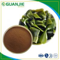 Buy cheap Kelp Extract/Kelp Extract Powder Free Sample with Competitive Price from wholesalers
