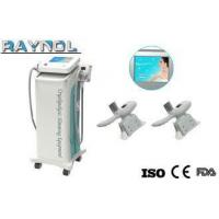 Buy cheap Multifunction Cryolipolysis Slimming Machine Effective With 2 Handpiece from wholesalers