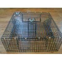 Buy cheap Commercial crab traps assisting with harvesting profits product