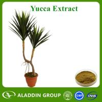 Buy cheap Yucca Extract from wholesalers