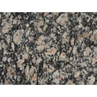 Buy cheap Mystic Grey Granite from wholesalers