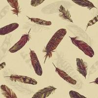 Buy cheap Arthouse Plume Feather Wallpaper from wholesalers