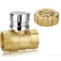 Buy cheap Brass/Bronze Y Strainers from wholesalers