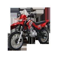 Buy cheap DIRT BIKE X-PLORE 150M(LF150GY-3B) from wholesalers