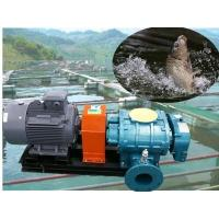 Buy cheap Oxygen generating roots blower compressor for fish pond from wholesalers