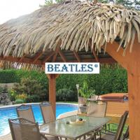 Buy cheap Synthetic PE Palm Grass Thatch for Palapa Structure from wholesalers