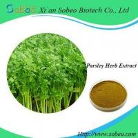 Buy cheap Parsley herb extract,Factory Supply parsley stem powder extract for sale from wholesalers