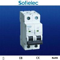 6KA 2 pole 63a isolator switch SFD16-63 CB approvl