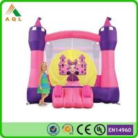Funny And Crazy Cheap Amusement Park Inflatable Bouncer Castle