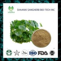 China 100% nature Centella Asiatica Extract on sale