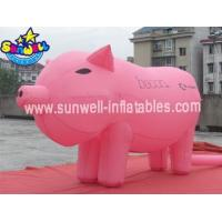 Inflatable Model SW-MD027