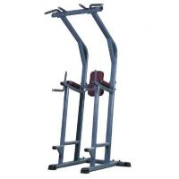 Buy cheap Chin /Dip Leg Raise Machine /Professional Fitness Equipment from wholesalers