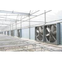 Buy cheap Poultry wall mounted ventilation fans from wholesalers