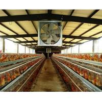 Buy cheap 1060mm Chicken House Axial Exhaust Fan from wholesalers