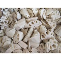 Buy cheap Lotus Root from wholesalers