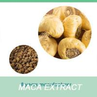 maca dried root 100% pure maca food