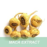 Buy cheap Penis enlargement herbs product 10:1 Maca root extract powder from wholesalers