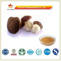 Buy cheap Wholesale Pure Natural Boletus Extract/Porcini Powder from wholesalers