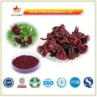 Buy cheap Herbal Rose Eggplant Extract/Hibiscus Sabdariffa from wholesalers