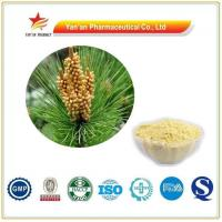 Buy cheap Wholesale Shell- Broken Pine Pollen Powder/Top Quality Pine Pollen Extract from wholesalers