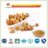 Buy cheap Wholesale Agaricus Blazei Powder/Top Quality Agaricus Blazei Mushroom Extract from wholesalers