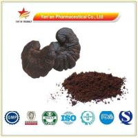 Buy cheap Factory Supply Shell-broken Reishi Spore Powder from wholesalers
