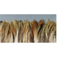 Buy cheap Cock Neck Hackle,mixed Color,strung from wholesalers