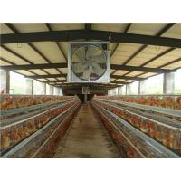 Buy cheap The name of the: Poultry house ventilation fan chicken house axial flow fan from wholesalers