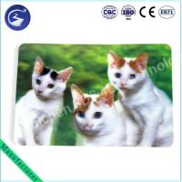 Buy cheap High quality 3D Lenticular Animal Placemat from wholesalers
