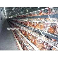 Buy cheap Welded Beam Attachment,beam Flange and Web for Prefabricated Poultry House from wholesalers