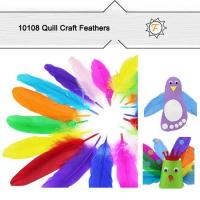 Buy cheap Hobby Bulk Quill Feathers for Craft Supplies product
